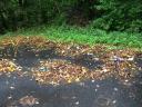 Müll auf dem Mikadoplatz / Geld für Hüinghauser Jugendliche